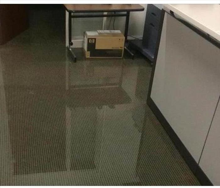Lakeland Pooling Water in an Office