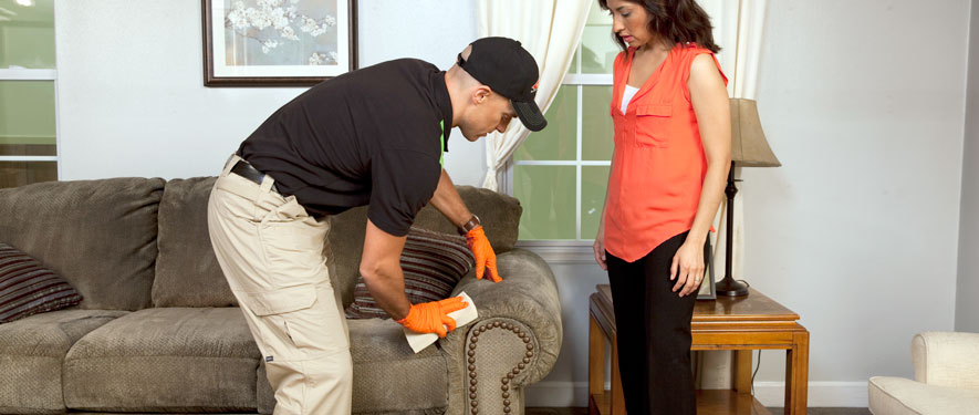Bartow, FL carpet upholstery cleaning