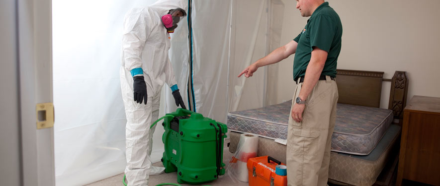 Bartow, FL mold removal process